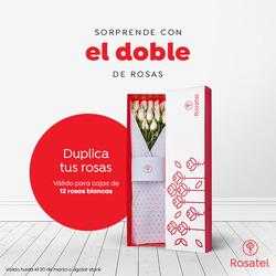 Ofertas de Rosatel  en el folleto de Lima