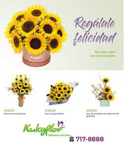 Ofertas de Kukyflor en el catálogo de Kukyflor ( 3 días más)