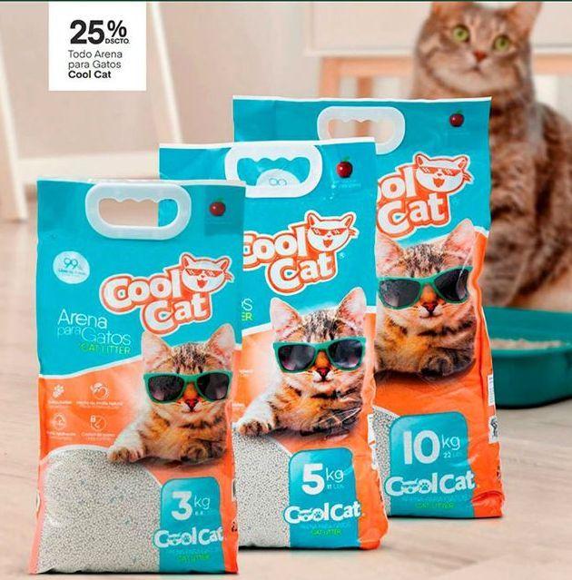Oferta de Comida para gatos Cool Cat por