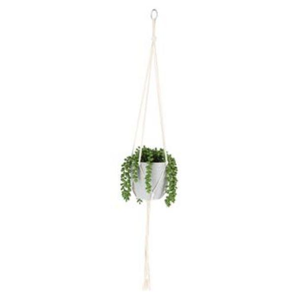 Oferta de Maceta Planta Colgante 20x90 cm por S/ 64,9