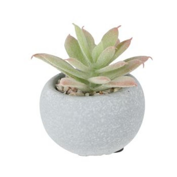 Oferta de Maceta Concreto Cactus 7x8 cm por S/ 12,9